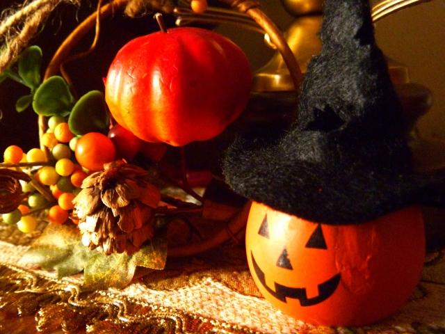 子供とハロウィンイベントへ!愛知県のワイルドフラワーガーデン!