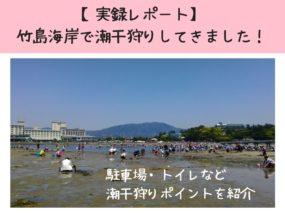 竹島海岸で潮干狩りレポート